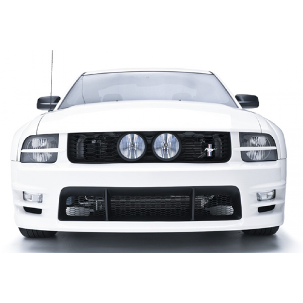 2005 Ford Gt Interior: 3dcarbon-grille-front-mustang-2005-2009-3d-69039
