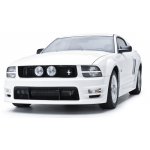 3dCarbon Grille style E Mustang 2005-2009 GT