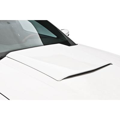3dCarbon Hood scoop Mustang 2010-2012