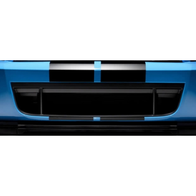 Ford Lower Grille 2010-2014 SHELBY GT500