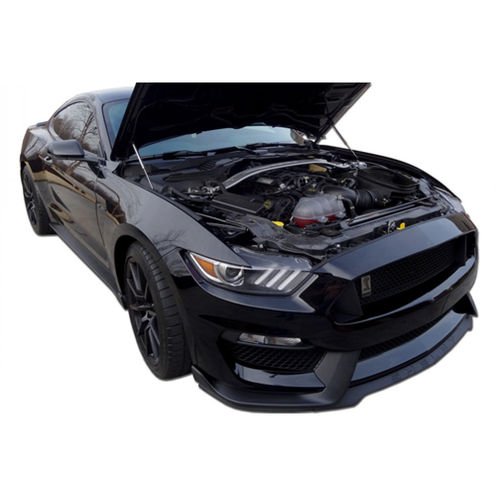 Redline Tuning Quicklift Elite Stainless Ford Mustang