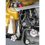 SHR Couvre Boite a Fusible Chromé 2010-2014 Mustang
